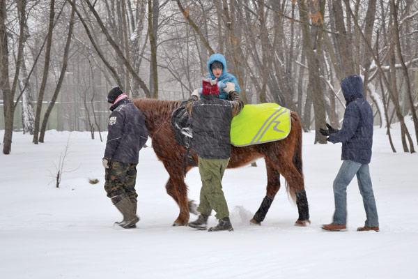 Лечебная верховая езда как способ реабилитации, или Что такое иппотерапия